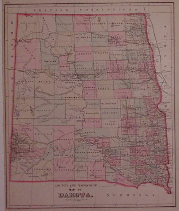 County and Township Map of Dakota. William M. BRADLEY.
