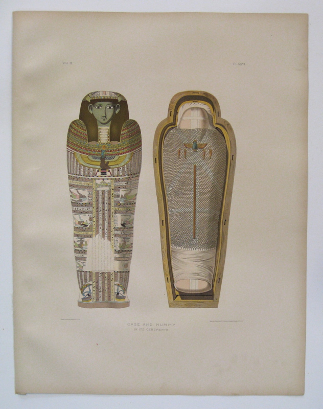 Case and Mummy in its Cerements. Samuel Augustus BINION.