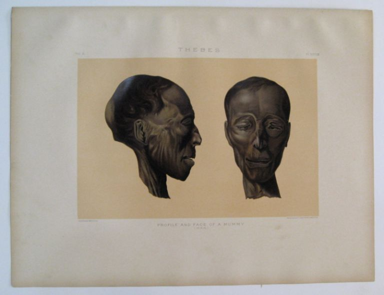 Thebes. Profile and Face of a Mummy. (Man.). Samuel Augustus BINION.