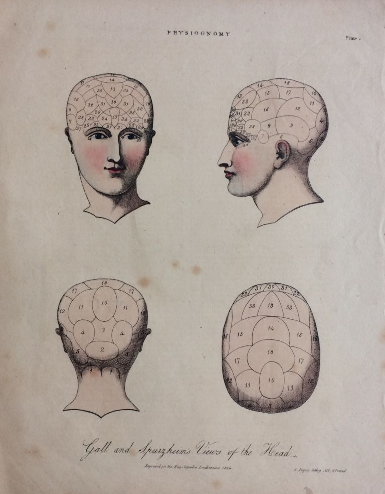 Gall and Spurzheim's Views of the Head. C. INGREY.