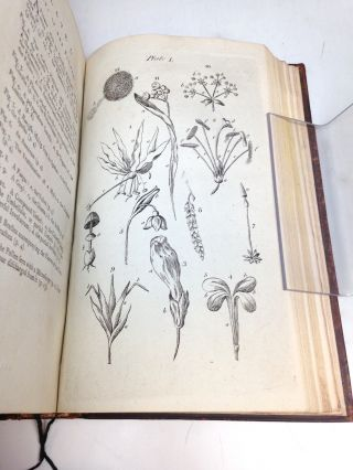 An Introduction to Botany.