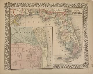 County Map of Florida. Samuel Augustus Jr MITCHELL.