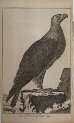 The Great, or, Golden Eagle. UNIVERSAL MAGAZINE.