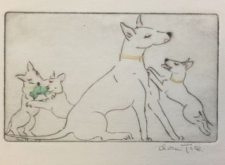 English Bull Terriers]. Clara TICE