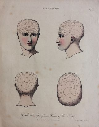 Gall and Spurzheim's Views of the Head. C. INGREY